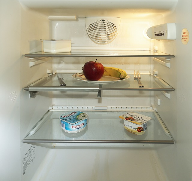 How Clean a domestic refrigerator
